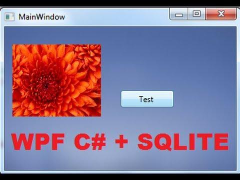 ado net tutorial c#
